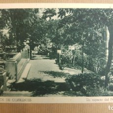Postales: HERVIDEROS DE COFRENTES, VALENCIA. UN ASPECTO DEL PARQUE. Lote 151374778