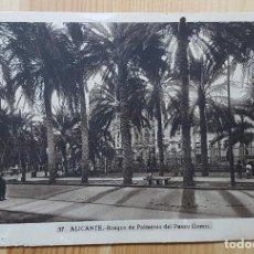 Postales: ALICANTE BOSQUE DE PALMERAS DEL PASEO GOMIZ ED. L. ROISIN Nº 57. Lote 153563466