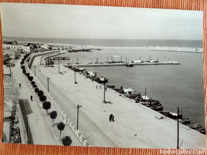 BENICARLO.PUERTO VISTA GENERAL. (EXC. JOSE MUCHOLA, Nº2.). FOTO ALFONSO. (Postales - España - Comunidad Valenciana Moderna (desde 1940))