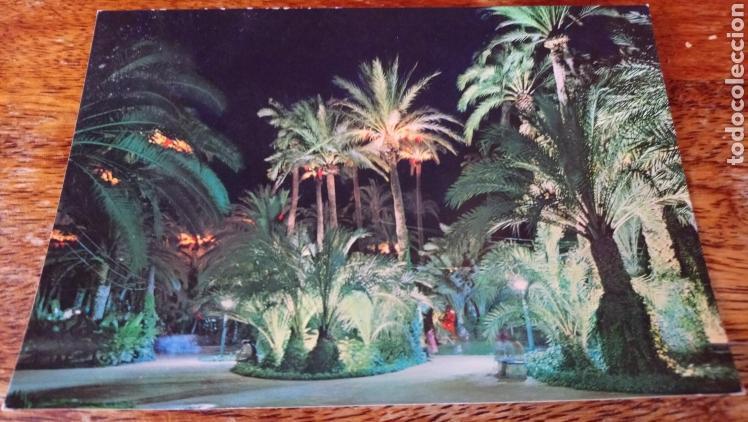 ELCHE. PARQUE MUNICIPAL. GARCÍA GARRABELLA. Nº 58 (Postales - España - Comunidad Valenciana Moderna (desde 1940))