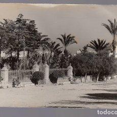Postales: GUARDAMAR DEL SEGURA (ALICANTE).- VIVERO CENTRAL. Lote 164778306