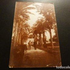 Postales: ALTEA ALICANTE ENTRADA DE UNA FINCA CON PALMERAS POSTAL FOTOGRAFICA ANTERIOR A 1906. Lote 164999494