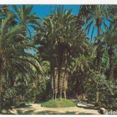 Postales: 103 - HUERTO DEL CURA - ELCHE.- PALMERA IMPERIAL. Lote 166139850