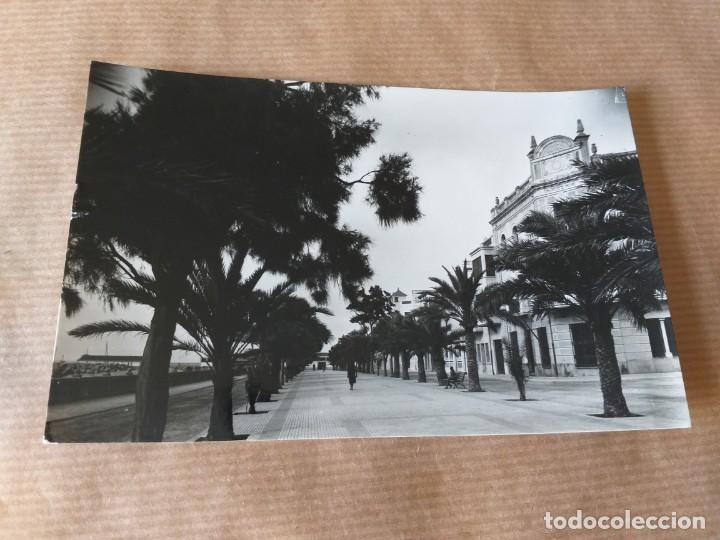 POSTAL DE VINAROZ. PASEO MARÍTIMO (Postales - España - Comunidad Valenciana Moderna (desde 1940))