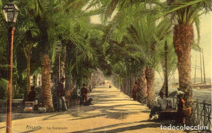 POSTAL COLOREADA DE LA EXPLANADA, ALICANTE (Postales - España - Comunidad Valenciana Antigua (hasta 1939))