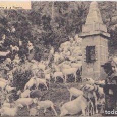 Postales: DESIERTO DE LAS PALMAS (CASTELLON) - JUNTO A LA FUENTE. Lote 170325088