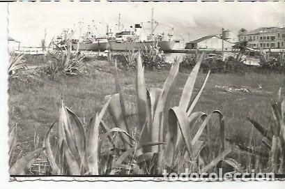 GANDÍA - VISTA PARCIAL DEL PUERTO - Nº 34 ED. ARRIBAS (Postales - España - Comunidad Valenciana Moderna (desde 1940))