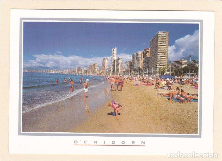 POSTAL BENIDORM. ALICANTE (1996) (Postales - España - Comunidad Valenciana Moderna (desde 1940))