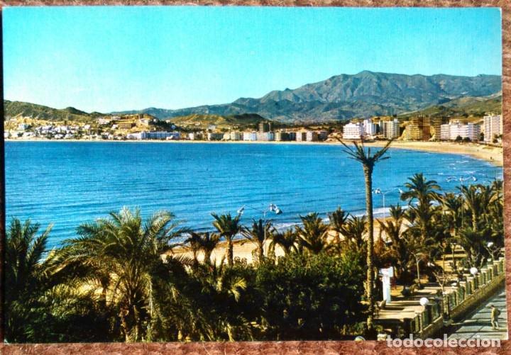 BENIDORM - ALICANTE (Postales - España - Comunidad Valenciana Moderna (desde 1940))