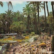 Postales: ELCHE, HUERTO DEL CURA - EDICIONES PERGAMINO Nº 3490 - S/C. Lote 179093287