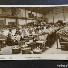 Postales: VALENCIA-EMPAPELADO DE NARANJA-FOTOGRAFICA DURA-102-POSTAL ANTIGUA-(64.615). Lote 184048687