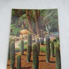 Postales: ELCHE - HUERTO DEL CURA - S/C. Lote 191201013