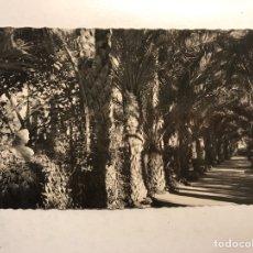 Postales: ELCHE (ALICANTE) POSTAL NO.27, HUERTO DEL CURA. LA TARTANA DE LA EMPERATRIZ ELISABETH (H.1950?). Lote 191927367