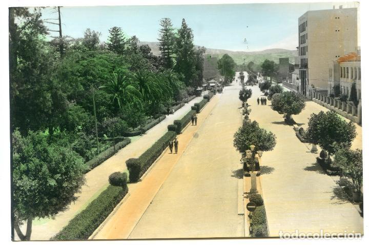 ORIHUELA. 1007. AVENIDA DE TEODOMIRO. EDICIONES ARRIBAS. COLOREADA (Postales - España - Comunidad Valenciana Antigua (hasta 1939))