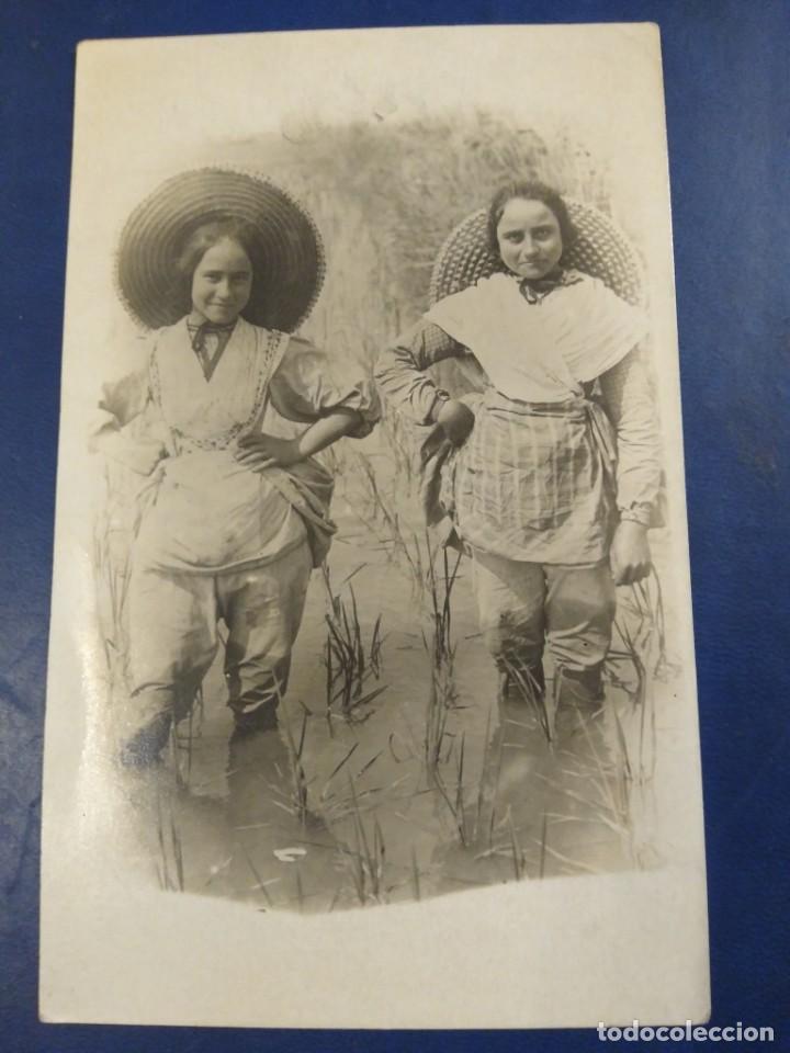 POSTAL FOTOGRÁFICA NIÑAS EN UN ARROZAL, VALENCIA. ?? NO FIGURA FOTOGRAFIÓ. (Postales - España - Comunidad Valenciana Antigua (hasta 1939))