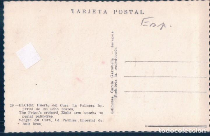 Postales: POSTAL ELCHE - HUERTO DEL CURA - LA PALMERA IMPERIAL DE LOS OCHO BRAZOS - GARRABELLA - Foto 2 - 194282131