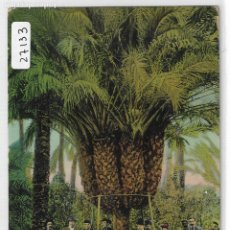 Postales: ELCHE / ELX - VISITA DE DON CAMILO FLAMARION - P27133. Lote 194407056