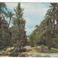 Postales: 33 - ELCHE.- HUERTO DEL CURA. DETALLE. Lote 194780811