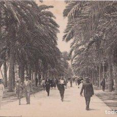 Postales: ALICANTE, PASEO DE LOS MÁRTIRES - L.ROISIN, FOT. Nº 32 - S/C. Lote 195415021