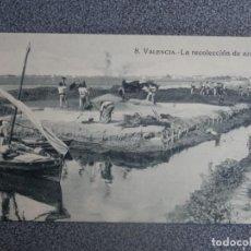 Postales: VALENCIA LA RECOLECCIÓN DE ARROZ POSTAL ANTIGUA EDICIONES ROSENDE PALOMARES. Lote 196749343
