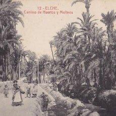 Postales: ALICANTE ELCHE CAMINO DE HUERTO Y MOLINOS. ED.THOMAS Nº 12. SIN CIRCULAR. Lote 205046405