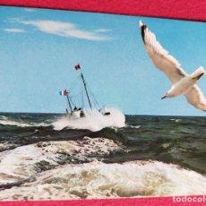 Cartes Postales: TARJETA POSTAL 3921 LA CÔTE ATLANTIQUE, MOUETLES PAR GROS TEMPS. ELCECOLOR COULOURS NAATURELLES. Lote 207714115