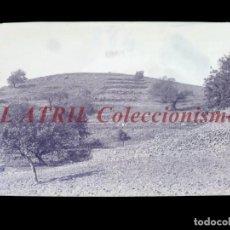 Postales: VILLAVIEJA, CASTELLON - CLICHE - NEGATIVO EN CELULOIDE - AÑOS 1900-1920 - FOTOTIP. THOMAS, BARCELONA. Lote 220497511