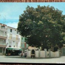 Postais: NAVAJAS - CASTELLON - PLAZA DEL OLMO. Lote 236769655