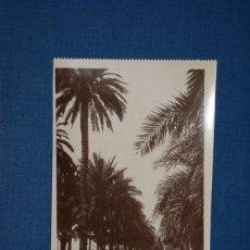 """Postales: TARJETA POSTAL ALICANTE EDICIONES """"UNIQUE"""" B/N Nº 1307 PASEO DE LOS MÁRTIRES. Lote 237573040"""