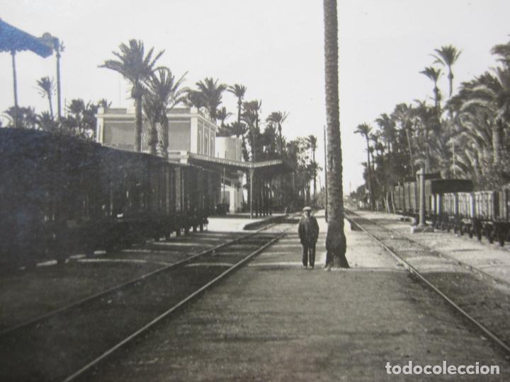 Postales: ELCHE-LA PALMERA DE LA ESTACION DEL FERROCARRIL-FOTOGRAFICA-ROISIN-POSTAL ANTIGUA-VER FOTOS-(77.841) - Foto 2 - 245101650