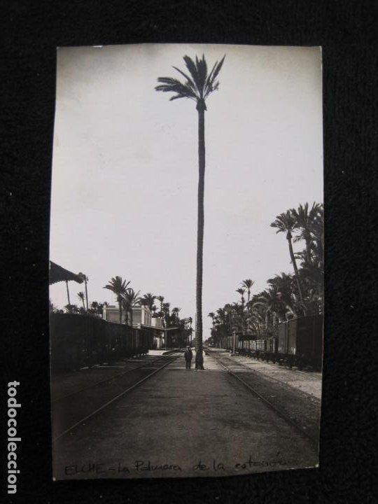 ELCHE-LA PALMERA DE LA ESTACION DEL FERROCARRIL-FOTOGRAFICA-ROISIN-POSTAL ANTIGUA-VER FOTOS-(77.841) (Postales - España - Comunidad Valenciana Antigua (hasta 1939))