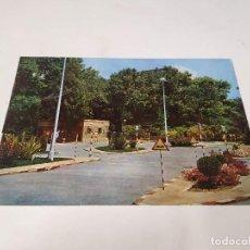 Cartes Postales: CASTELLÓN - POSTAL CASTELLÓN DE LA PLANA - PARQUE DE RIBALTA. Lote 249035765
