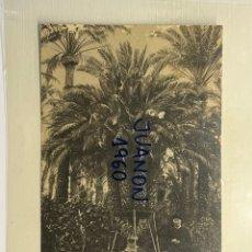 Postales: ELCHE (ALICANTE) POSTAL PALMERA DEL CURA. LA IMPERIAL. EDICIÓN BOTELLA (H.1920?) S/C. Lote 294115513