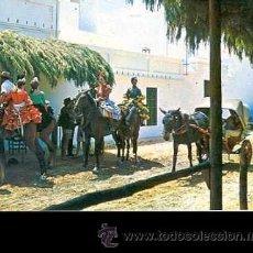 Postales: * ROMERIA DEL ROCIO * PELEGRINAGE DEL ROCÍO (1968). Lote 43826063