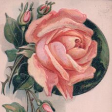 Postales: POSTAL EN RELIEVE ROSA - FELIZ CUMPLEAÑOS - BIRTHDAY GREETING - CIRCULADA 1909. Lote 95405915