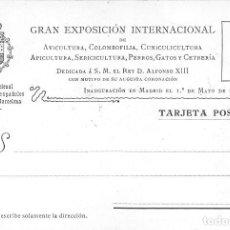 Postales: TARJETA POSTAL CON MOTIVO DE LA EXP. INTERNCAL DE COLOMBOFILIA, CUNICULTURA, PERROS, GATOS -AÑO 1902. Lote 110320679