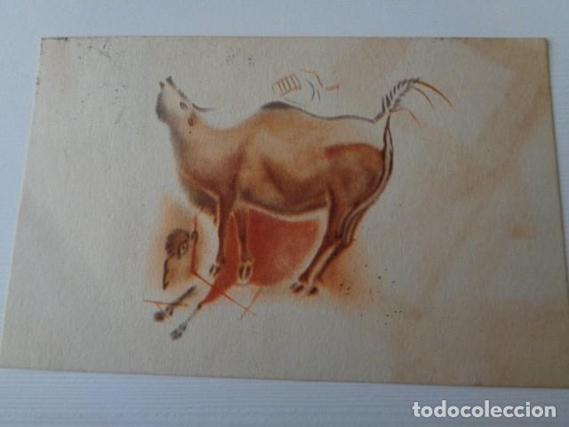 PATRONATO CUEVAS DE ALTAMIRA. SANTANDER. TAMPON MENENDEZ Y PIDAL, TORRELAVEGA. POSTAL CIRCULADA (Postales - Postales Temáticas - Conmemorativas)