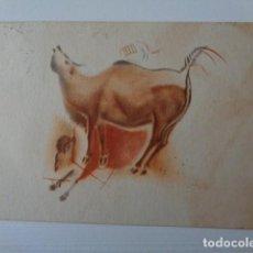 Postales: PATRONATO CUEVAS DE ALTAMIRA. SANTANDER. TAMPON MENENDEZ Y PIDAL, TORRELAVEGA. POSTAL CIRCULADA. Lote 219006652