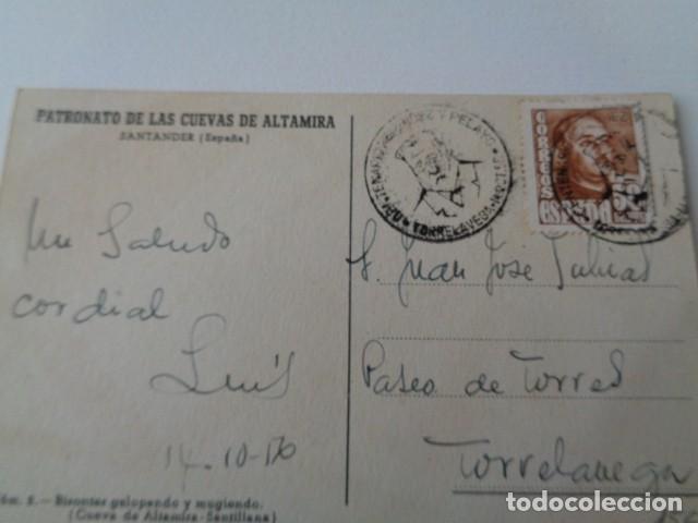 Postales: PATRONATO CUEVAS DE ALTAMIRA. SANTANDER. TAMPON MENENDEZ Y PIDAL, TORRELAVEGA. POSTAL CIRCULADA - Foto 2 - 219006652