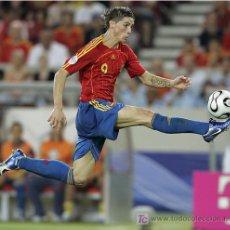 Coleccionismo deportivo: FOTO FERNANDO TORRES MUNDIAL 2006. Lote 5309310
