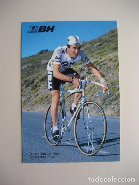 CICLISMO: P. ANTEQUERA - EQUIPO CICLISTA BH 1987 - PUBLICIDAD OFICIAL DEL EQUIPO (Coleccionismo Deportivo - Postales de otros Deportes )