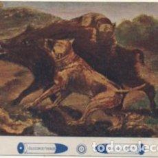 Coleccionismo deportivo: POSTAL DE COLECCIONISMO DEPORTIVO. MONTERIA EN SIERRA MORENA Nº13 P-DEP-010. Lote 194367633