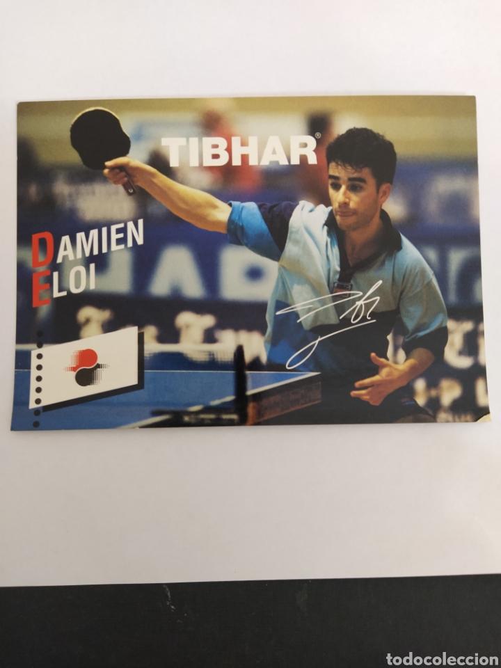 FOTO POSTAL TENIS DE MESA PUBLICIDAD TIBHAR - DAMIEN ELOI (Coleccionismo Deportivo - Postales de otros Deportes )