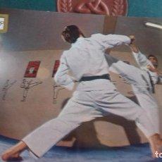 Coleccionismo deportivo: SERIE KARATE POSTAL. Lote 215902717