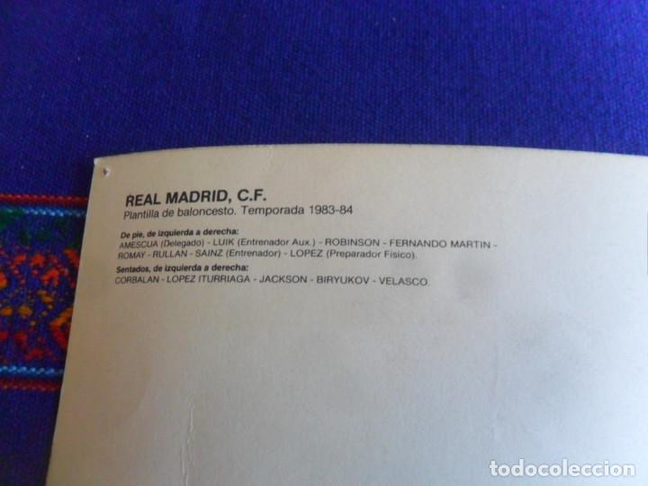 Coleccionismo deportivo: CARTEL POSTAL GIGANTE PLANTILLA REAL MADRID DE BALONCESTO 1983 84. GRÁFICAS MORA. 42X30 CMS. - Foto 3 - 278268568