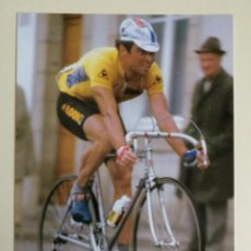 Coleccionismo deportivo: BERNARD HINAULT -- FOTO PROMOCIONAL. Lote 295780998