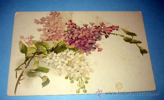 Antigua Postal De Flores Muy Bonita Ilustraci Comprar Postales