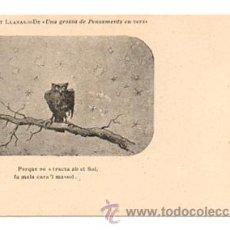 Postales: ALBERT LLANAS. DIBUIXOS DE MODEST URGELL. 'UNA GROSSA DE PENSAMENTS EN VERS'. . Lote 28749213
