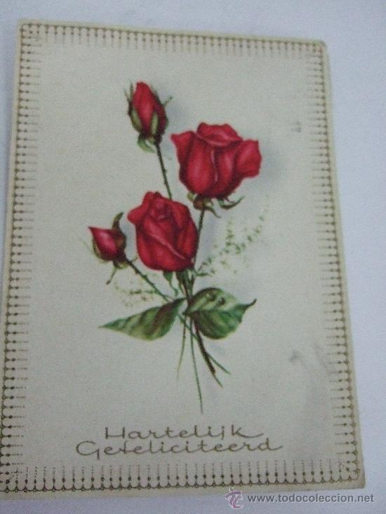 Postal Circulada Holanda 1969 Ramo De Rosas Rojas