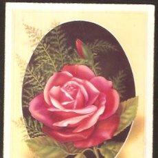 Cartoline: POSTAL VIVES * ROSA *. Lote 38009523